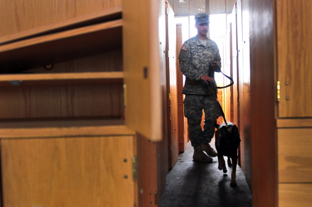 Eric Smith, a military working dog handler, and Viola, a patrol explosive detector dog with the 550th Military Working Dog Detachment, 42nd Military Police Detachment, 503rd Military Police Battalion, search for explosives during an explosive detection training exercise Nov. 8, 2016 at Macomb Warehouse, Fort Bragg, N.C. The training helps the dog and her handler to minimize confusion while searching more than one objective in large areas.