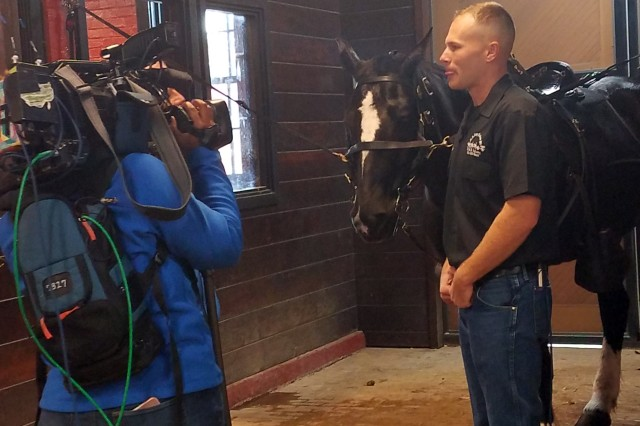1st Lt. Austin Hatch, a member of the Caisson Platoon of the U.S. Army 3rd Infantry Regiment, conducts an interview with Bob Barnard of the Fox 5 Morning Show, regarding Army participation in the 58th Presidential Inauguration. Horses in the stable at JBM-HH like the one in the background will participate in the parade.