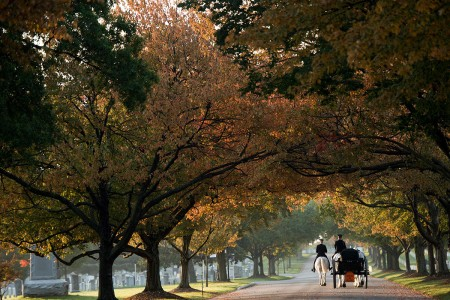 Caisson Soldiers of the 3rd U.S. Infantry Regiment (The Old Guard) travel to their first mission of the morning at Arlington National Cemetery, Va., Oct. 17, 2016. The Old Guard conducts missions year round throughout the four seasons.