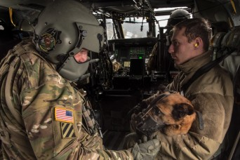 Dogs, medics take to the air