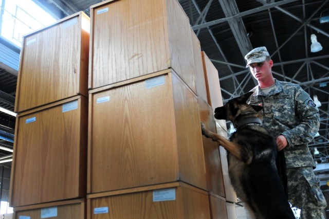 Pvt. Eric Smith, a military working dog handler, and Viola, a patrol explosive detector dog with the 550th Military Working Dog Detachment, 42nd Military Police Detachment, 503rd Military Police Battalion, search for explosives during an explosive detection training exercise Nov. 8, 2016 at Macomb Warehouse, Fort Bragg, N.C. The training helps the dog and her handler to minimize confusion while searching more than one objective in large areas.