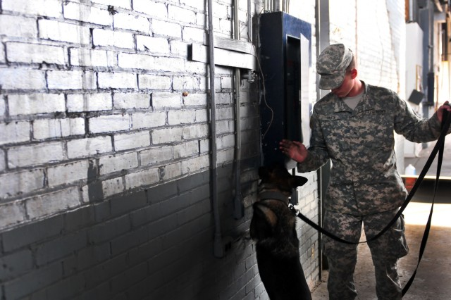 Pvt. Eric Smith, a military working dog handler, and Viola, a patrol explosive detector dog with the 550th Military Working Dog Detachment, 42nd Military Police Detachment, 503rd Military Police Battalion, inspect areas that may have explosive residue during an explosive detection training exercise Nov. 8, 2016 at Macomb Warehouse, Fort Bragg, N.C. The explosive detection training exercise is meant to test a military working dog handlers' ability to control his or her dog while directing searches through containers. (U.S. Army photo by Pfc. Hubert D. Delany III/22nd Mobile Public Affairs Detachment)