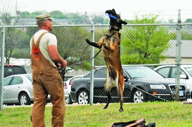 An instructor at the Military Working Dog School at Lackland Air Force Base, Texas, rewards one of the training dogs after completing a task successfully. The dog-training school produces about 270 multipurpose dogs a year, according to school officials.