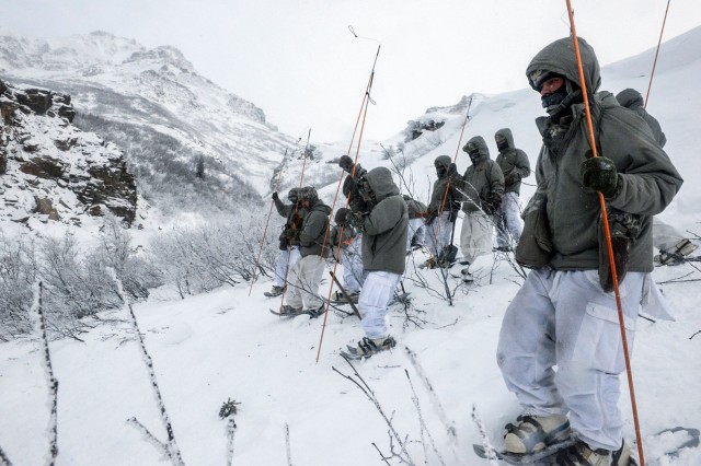 Probers search for bodies in the aftermath of an avalanche during the bivouac portion of the Cold Weather Leaders Course, Feb. 9-14, 2017.  The CWLC is taught at the Northern Warfare Training Center at Black Rapids, Alaska.  The entire course ran Feb. 2-16, 2017.