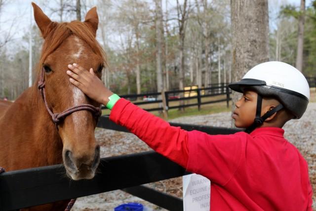 A horse, friend