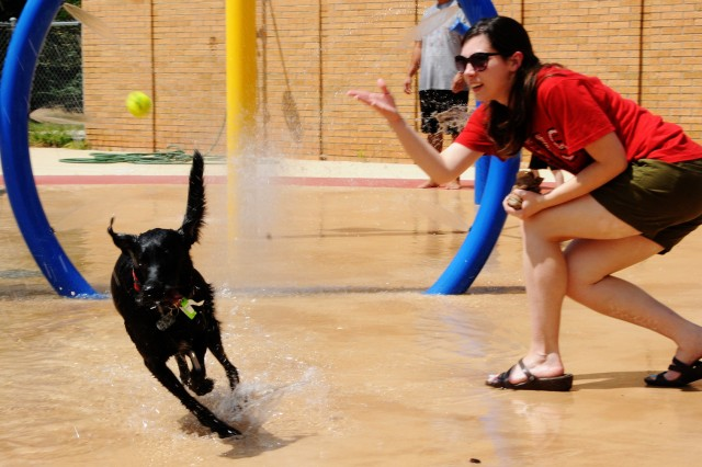Hannah Gabbard, military spouse, plays fetch with her dog, Rosco, in the spray park of Splash! Pool and Spray Park during Dog Days of Summer last year.