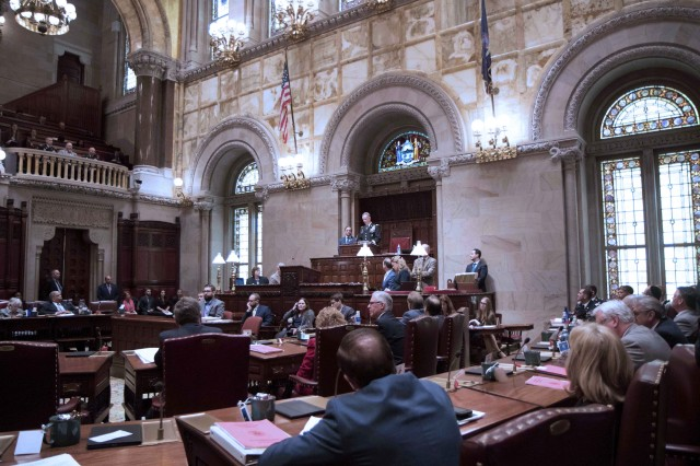 Maj. Gen. Walter E. Piatt, Fort Drum and 10th Mountain Division (LI) commander addresses New York State officials at the Senate Chamber during the sixth annual 10th Mountain Division and Fort Drum day at the New York State Capitol in Albany, NY.