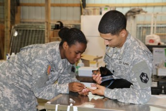 Veterinary Corps provides over 100 years of animal care for Army missions, families