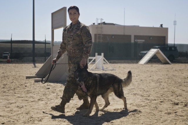 "Pfc. Elizabeth Adrian, an Army military working dog handler with the Directorate of Emergency Services, Area Support Group - Kuwait, walks with her military working dog (MWD) ""Freddy"" during a demonstration of MWD capabilities at Camp Arifjan, Kuwait, on Mar. 7, 2017."