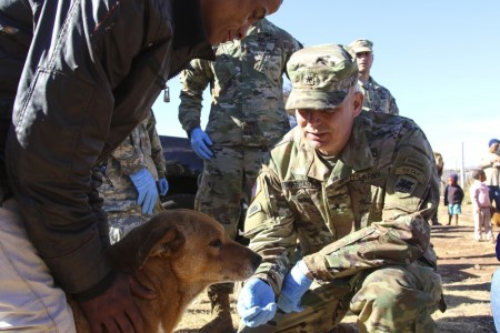POSTMASBURG, South Africa -- U.S. Army Africa Command (USARAF) Soldiers, troops from the 101st Airborne Division (Air Assault), and servicemembers from the South African National Defense Force celebrated Nelson Mandela International Day 2017 by partnering with a local South African animal shelter to provide free exams and medical treatment for Postmasburg pets July 18.