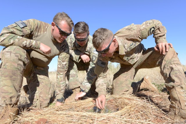 Pfc. Brian Morris, left, and Spcs. Grant Fletcher and Matthew Ledford, all from 101st Airborne Division's 2nd Battalion, 327th Infantry Regiment, build a contraption that obtains drinking water from leaves through condensation during bushcraft training as part of the Shared Accord exercise at the South African Army Combat Training Center in Lohatla July 21, 2017.