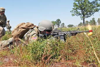 Army, joint forces strike again in annual Michigan exercise