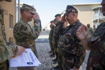 361st CA BDE completes annual training during Saber Guardian