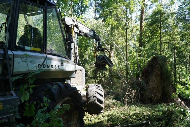 A German Forestry Office worker removes broken birch trees and pines in the Grafenwoehr Training Area that broke and collapsed during a severe thunderstorm. The German Forestry Office worked closely with U.S. Army Garrison Bavaria officials and tenant units to restore installation safety and security after Thursday's storm.