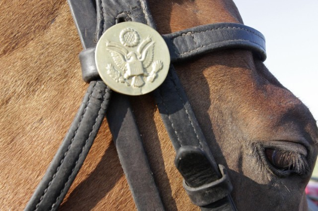 Horses, named after former Fort Sill generals, wear an Army rosette.