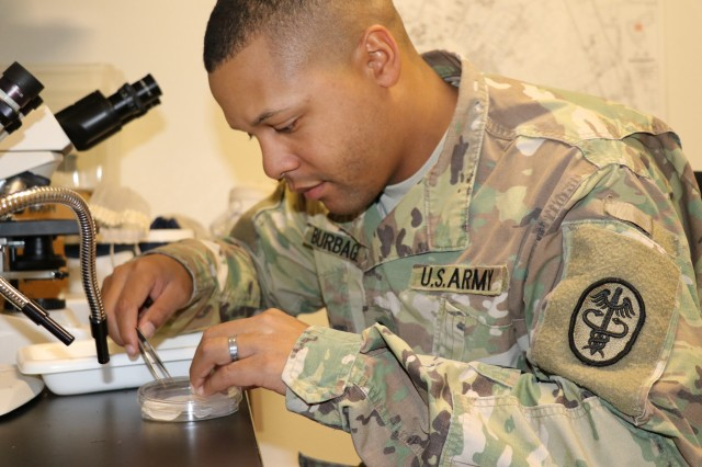 U.S. Army Spc. Randell Burbage, a Preventative Medicine Specialist with Raymond W. Bliss Army Health Center Environmental Health Department, places a mosquito sample in a petri dish. The sample will be mailed to Public Health Command-Central where it will be tested for mosquito-borne diseases. (U.S. Army Photo by Wendy Arevalo)