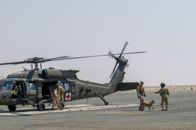 Task Force Wraith Soldiers escort military working dogs and their U.S. Marine handlers away from an HH-60M aeromedical evacuation helicopter during joint training on September 2 at Camp Buehring, Kuwait.