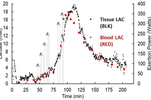 A readout of lactate measurement levels over time as provided by a continuous lactate monitor. Lactic acid levels rise during episodes of critical illness and internal bleeding, which may not be visible to the naked eye.