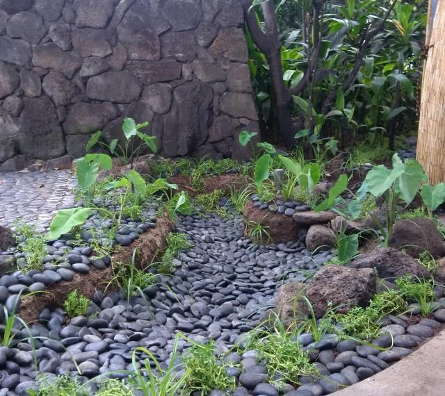 Waikiki Improvement Association awards Hale Koa 'Pili Honua' Award