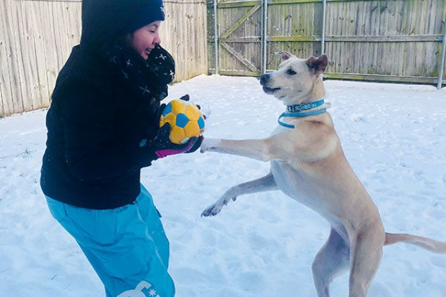 Anna Bloomingdale, 12, daughter of Spc. Ryan Bloomingdale, 86th Combat Support Hospital, plays with Elsa, her epilepsy service dog in the backyard following a snow storm on Fort Campbell, Ky.