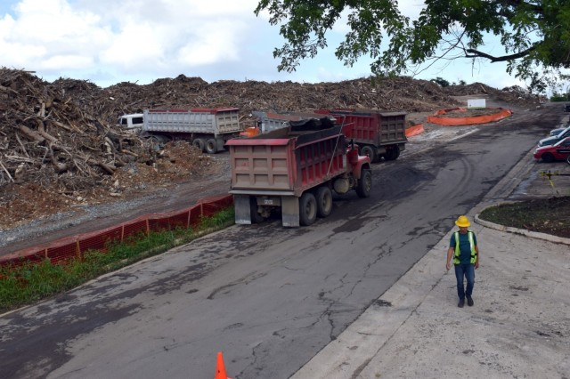 Mounds of vegetative debris are collected and sorted by U.S. Army Corps of Engineers contractors across Puerto Rico, in support of Hurricane Maria recovery efforts.