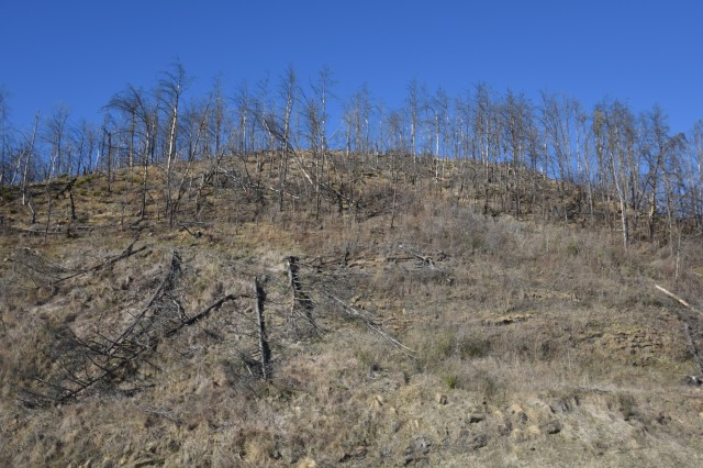 Signs of the wildfires that moved through Sevier County and city of Gatlinburg in November 2016 still remain Jan. 25, 2018 near the Gatlinburg Bypass Overlook. Members of the Tennessee Silver Jackets team toured the area and received a briefing on the wildfires from local officials.  Silver Jackets is an innovative partnership where local, state and federal agencies facilitate flood risk reduction, coordinates programs, promotes cohesive solutions, synchronizes plans and policies, and ultimately provides integrated solutions. (USACE photo by Leon Roberts)