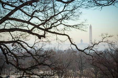 Freezing fog rolls across section 66 of Arlington National Cemetery, Arlington, Va., Jan. 9, 2018.