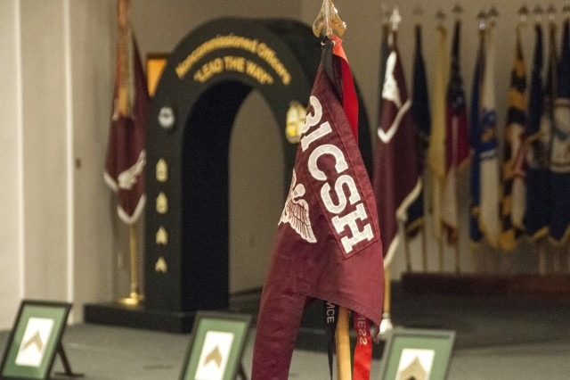 The 31st Combat Support Hospital colors are displayed in front of an archway used to welcome newly-inducted noncommissioned officers to the U.S. Army Noncommissioned Officer Corps during an NCO Corps induction ceremony at Sage Hall, Fort Bliss, Texas, Jan. 24. Over 50 NCOs belonging to the 31st CSH and William Beaumont Army Medical Center were inducted to the NCO Corps.