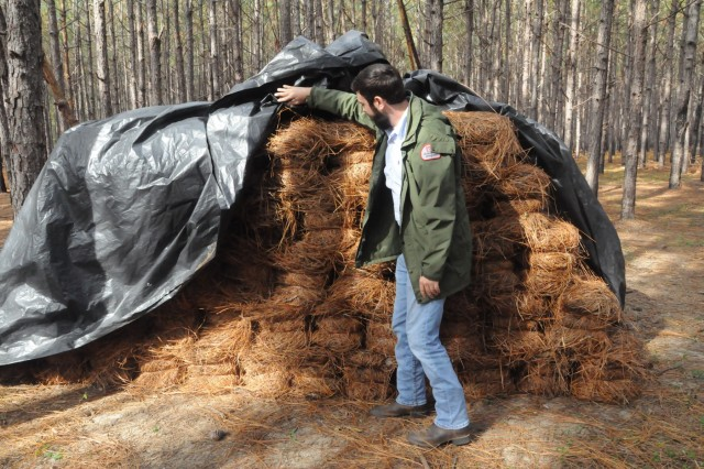 Josh O'Neal, resident forester at the U.S. Army Corps of Engineers Forestry Resources Office, Fort Stewart, Ga., inspects bales of pine straw before they are hauled off the installation.