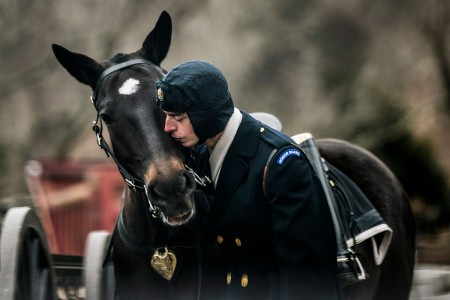 A Soldier with the 3rd U.S. Infantry Regiment (Old Guard), gives a kiss to Hank, an 11 years old Caisson Platoon horse, before conducting funeral training at Arlington National Cemetery, Arlington, Va., Feb. 6, 2018.