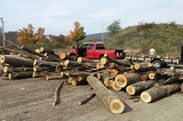 The Team assists with harvesting of forestlands on a rotational schedule, and the wood is sold on the open market with proceeds being redirected to NRC programs.  Timber harvesting activities are used to facilitate the military mission and to maintain a healthy forest ecosystem.  The installation also offers a firewood program that is open to the public and is readily used by the surrounding community for heating homes and other uses.