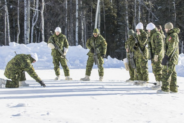 Canadian Soldiers of the Royal Westminster Regiment and Seaforth Highlanders of Canada  review response to contact tactics during Arctic Eagle 2018 at the Donnelly Training Area outside of Fort Greely, Alaska, Mar. 1, 2018. The goals of Arctic Eagle 2018 are for participating forces to operate in a joint, interagency, intergovernmental and multinational environment; assess ability to conduct sustained operations in arctic conditions, and integrate new and emerging capabilities.