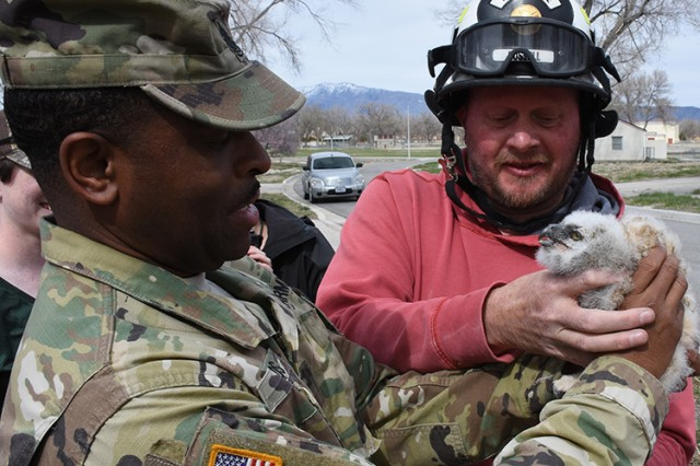 180418-A-BB276-015After retrieving a two-week-old Great Horned Owl from its nest, using an extendable fire engine platform, Wildlife Biologist Robbie Knight hands the owlet to Dugway Proving Ground Command Sgt. Maj. Joe Bonds. The occasion was the observance of April 18, 2018 Earth Day at Dugway Proving Ground, Utah. The owlet had a band placed on its leg, so that when captured by wildlife personnel for study over its expected 13-year life span, they can determine its age, origin and general health. Photo by Al Vogel, Dugway Proving Ground Public Affairs