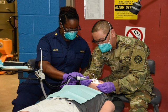 Lt. Cmdr. Monique Lester, an environmental health officer assigned to the PHS-2 Rapid Deployment Force and U.S. Army Maj. Brian Choi, a general dentist assigned to the 104th Area Support Medical Company, demonstrate giving dental treatment to a medical dummy May 9, 2018, in the Edgewood Area of Aberdeen Proving Ground, Md. during Maryland's Exercise Vigilant Guard 18. Nearly 2,000 service members, from with in the FEMA Region III area, are participating in the Vigilant Guard exercises in Maryland and Virginia.