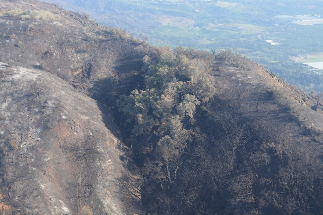 The contrast of burn scars on the mountainsides overlooking plush green landscapes in Santa Barbara County, California, can be seen Jan. 18 from a UH-60 Blackhawk helicopter.