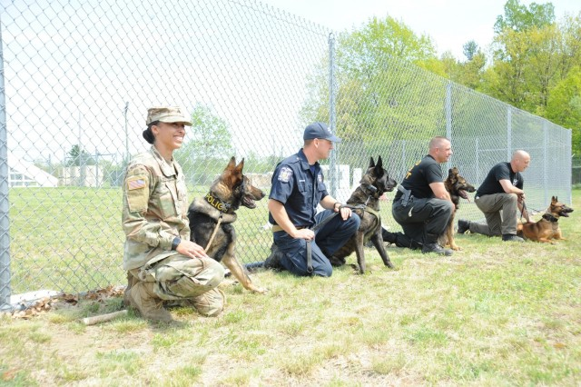 Hosted by the 8th Military Working Dog Detachment, 91st Military Police Battalion, the Top Dog Competition on May 23 tested K9 teams from Jefferson County Sheriff's Department, Watertown Police Department, New York State Troopers and Fort Drum.