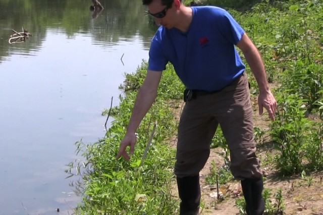 USACE Buffalo District ecologist Josh Unghire does a site visit for the ecosystem restoration project at Seneca Bluffs May 30. Unqhire examined some of the vegetation in the area, while also observing some native animal species along the inspection.