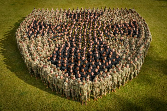 More than 800 Soldiers from the 8th Theater Sustainment Command, re-create the division's insignia at Hamilton Field on Schofield Barracks, HI, Jun. 6, 2018. This was the first time 8TSC has created the insignia.  U.S. Army photo by Pfc. Geordan Tyquiengco)