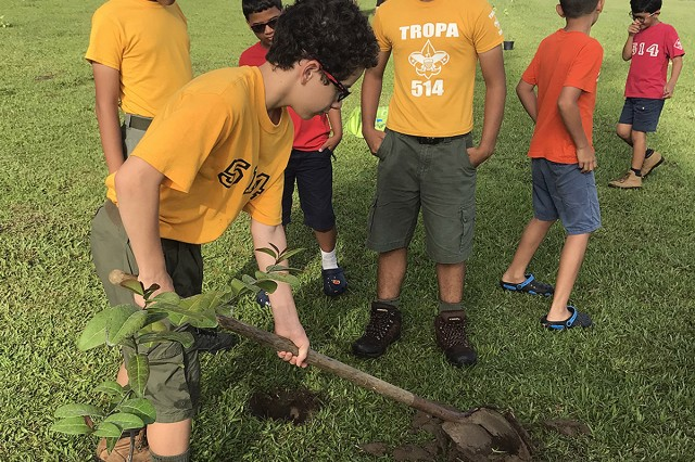 Boy Scouts from Troop 514 in Ponce, Puerto Rico lend their hands to plant 20 endangered palo de rosa seedlings at Fort Buchanan. Fort Buchanan is a leading steward of palo de rosa conservation efforts in the Caribbean. (Photo contributed by Anibal Negron and Victor Rodriguez Cruz, Fort Buchanan)