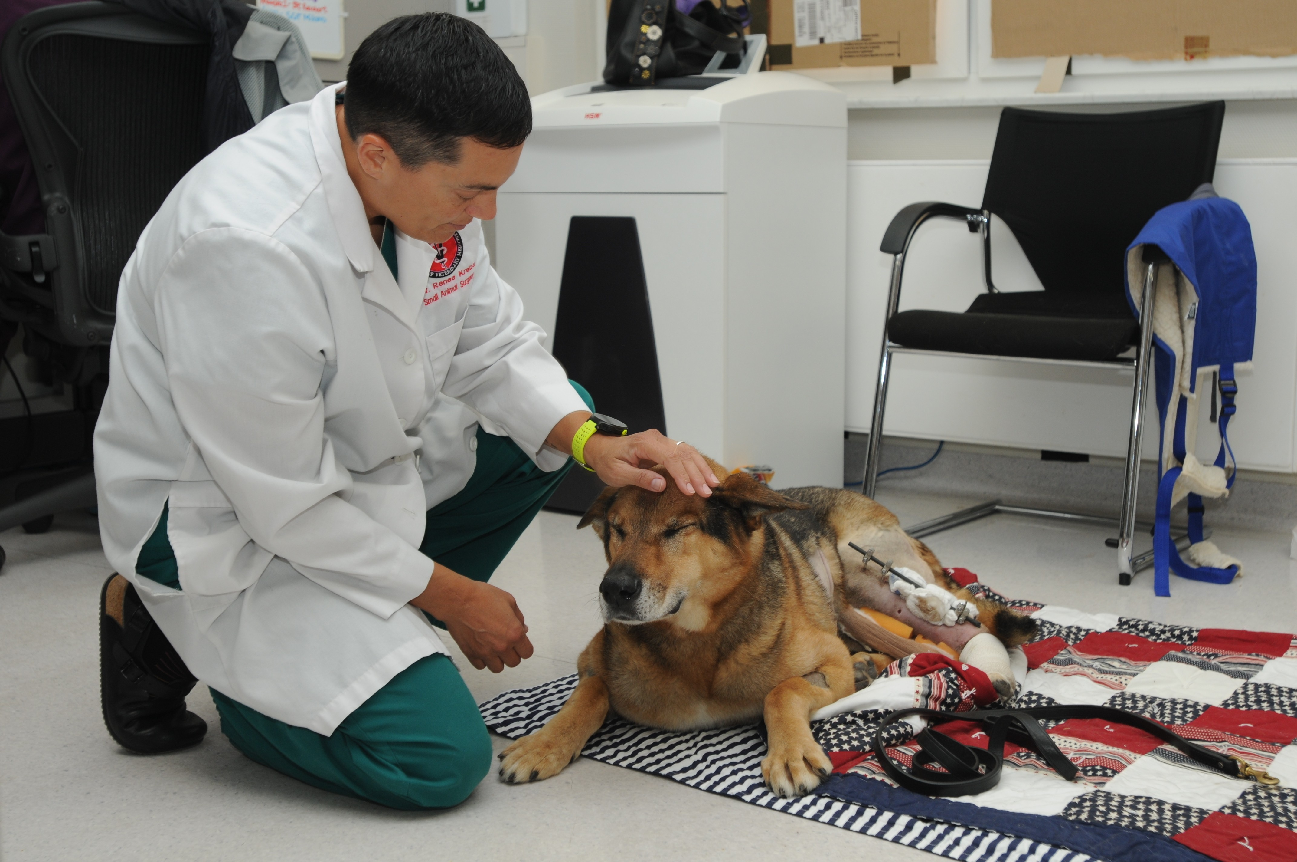 Army Veterinary Clinic Helps Military Working Dog Get Back On Its