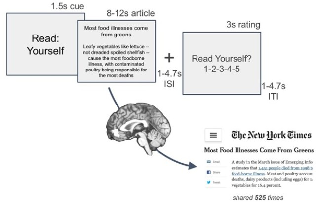 A portion of the Army Research Laboratory and University of Pennsylvania's New York Times article viewing task and prediction of population information sharing. Brain activity was measured as people read and listened to headlines and abstracts of New York Times articles focusing on health and fitness.