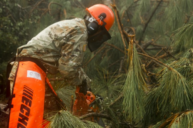 A Soldier from the Florida National Guard's Chemical, Biological, Radiological, Nuclear and high-yield Explosive (CBRNE) Enhanced Response Force Package (CERFP) unit, uses a chainsaw to help clear a roadway to enable his team to access a remote area, as they conduct house to house wellness checks, Oct. 16, 2018. The CERFP unit utilizes varying skills to provide assistance following natural disasters.