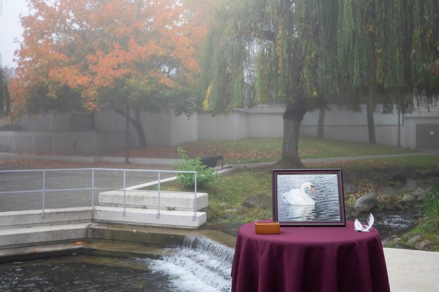 A memorial display shows a photo of the departed and beloved swan Madi at a small service to thank her for her healing presence at Madigan Army Medical Center and commit her ashes to the aquatic home she graced for so many years. A foggy fall morning on Joint Base Lewis-McChord, Wash., provides a solemn backdrop for the Oct. 19 ceremony.