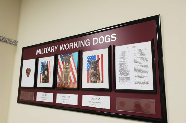"To honor the MWDs treated at the Vicenza VTF, the new clinic also includes a ""Military Working Dog Wall of Fame,"" with photos and names of the MWDs that receive care at the facility."