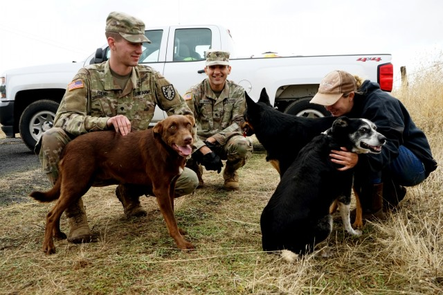 California National Guard Soldiers from the 2632nd Transportation Company pause their work to greet rancher Megan Brown's dogs at her ranch outside of Paradise, California, Nov. 28, 2018. The Soldiers were delivering water to Brown, a sixth generation rancher, who stayed on her land when the deadly Camp Fire swept through, rather than leave her animals at risk.