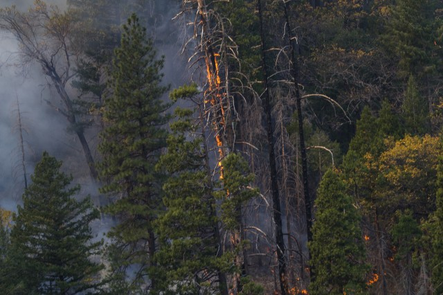 Trees and brush burn in the Feather River Canyon as the Camp Fire works its way across the mountainous terrain, Nov. 15, 2018, as a U.S. Army UH-60M Black Hawk helicopter from the 1st Assault Helicopter Battalion, 140th Aviation Regiment, California Army National Guard, works a water bucket on the fire's northeastern edge in Butte County, California. The California National Guard provided four helicopters to help contain the fire, including two of it's new M-model UH-60 Black Hawks.