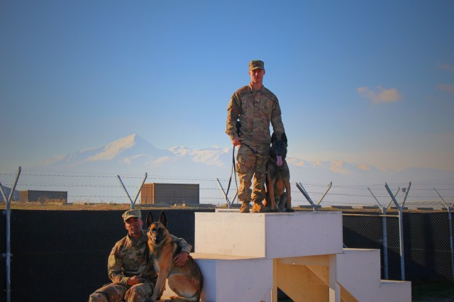 Sgt. Benjamin Paige (right), and Sgt. Joseph Tucci (left), of the 709th Military Police Battalion pose with their military working dogs, Dec. 6, 2018, at Camp Bondsteel, Kosovo. The Soldiers and working dogs perform force protection and security operations in support of the NATO mission at Camp Bondsteel.