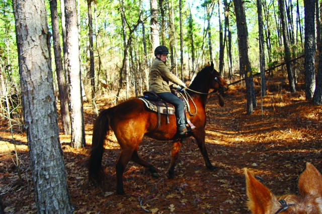 A member of a team of horse riders explores remote areas of Fort Jackson Jan. 26 as part of a strategy to identify potential threats to natural resources or Soldiers.