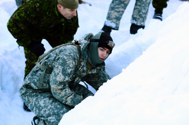 Oregon Army National Guard Spc. Dakota Cunningham, with Headquarters and Headquarters Company, 2nd Battalion, 162nd Infantry Regiment, 41st Infantry Brigade Combat Team, inspects a snow shelter built by Canadian Rangers to learn techniques for building his own shelter to sleep in during Westie Avalanche Exercise, Jan. 26, 2019, at E.C. Manning Park, British Columbia, Canada.