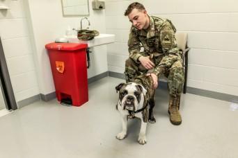 "First class care for ""Bulldog Brigade"" mascot"